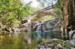 "Beautifull ""Little Crystal Creek"" is a a swimming hole and GREAT day trip when you are looking for something to do in Townsville."