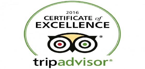 "Trip Advisor ""Certificate of Excellence"""